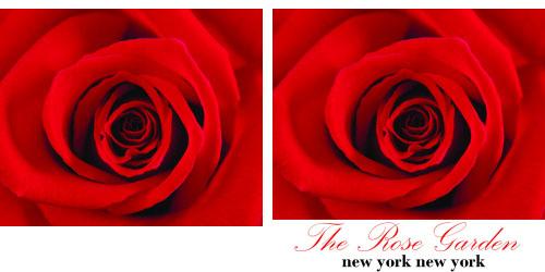 Custom Printed Self-Stick Label - Red Rose