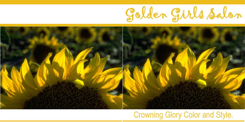 Custom Printed Self-Stick Label - Sunflower Crown