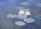waterlilies100.jpg